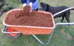 composting made easy